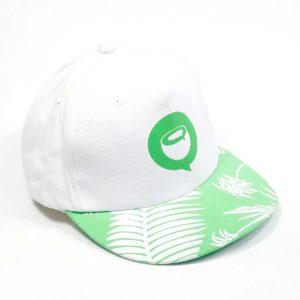 หมวกฮิปฮอปทูโทน